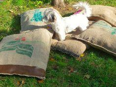Gatos Cats, Garden Ideas, Blanket, Facebook, Bed, Toss Pillows, Beds, Dogs, Stream Bed
