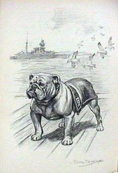 English Bulldog Marine Mascot Dog 1953 Vintage Dog Art Print | eBay