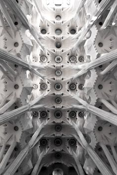 vaults from sagrada familia...one reason why I am so in love with architecture...