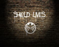 I don't care about HYDRA taking over, I still believe in SHIELD and the good it has done and will continue to do. SHIELD lives!