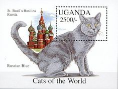 Cats on Stamps Grey Cat Breeds, Russian Blue, Vintage Stamps, Cat Quotes, Stamp Collecting, Cat Art, Pet Birds, Cute Cats, Kitty