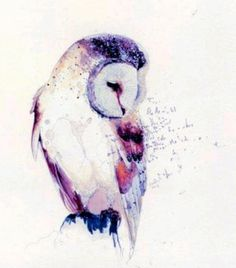 Watercolor snow owl