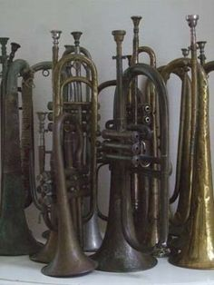 trumpets #collectme