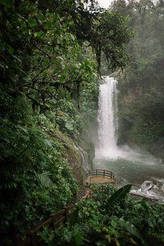Real Weddings: Rebecca and Joshua's Costa Rica Wildlife Refuge Elopement picture by Comfort Studios