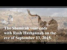 Surviving a Shemitah Financial Crisis - What YOU Need to Know - YouTube