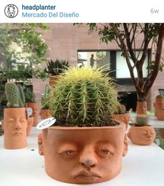 Of The Most Creative Planter Designs Ever Face Planters, Flower Planters, Flower Pots, Garden Planters, Ceramic Pots, Ceramic Pottery, Succulent Pots, Succulent Containers, Container Plants