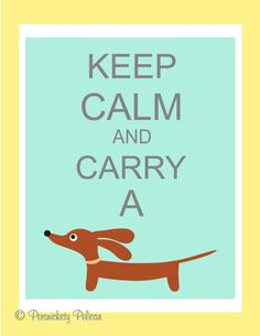 Keep Calm and Carry a Doxie