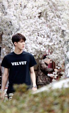 EXO Sehun ... his shirt <333