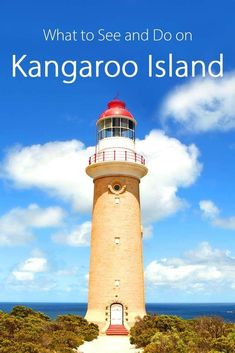 Complete travel guide to Kangaroo Island in Southern Australia: trip itinerary, best places to see, things to do, and accommodation advice. Plan an unforgettable trip to Kangaroo Island with our tips based on firsthand experience! Brisbane, Melbourne, Sydney, Australia Travel Guide, Perth Australia, Western Australia, Cycling Australia, Great Barrier Reef, Auckland