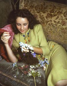 Elizabeth Taylor 8x10 photo #U6549