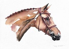Horse head watercolor painting by the equestrian artist Reyes de Wit Horse Head Drawing, Horse Drawings, Art Drawings, Watercolor Horse, Watercolor Sketch, Watercolor Paintings, Drawing Techniques Pencil, Horse Water, Horse Braiding