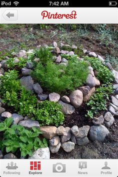 Rocks with moss for a faerie circle or spiral