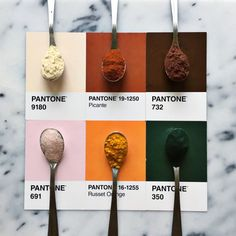 Designer Creatively Pairs Food with Their Pantone Swatch Colors - My Modern Met Colour Pallette, Colour Schemes, Color Trends, Color Combos, Color Patterns, Pantone Swatches, Color Swatches, Pantone Colour Palettes, Pantone Color