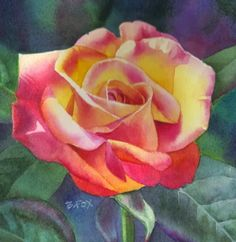 SWEETEST ROSE watercolor flower rose painting, painting by artist Barbara Fox