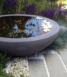 The Lily Bowl.