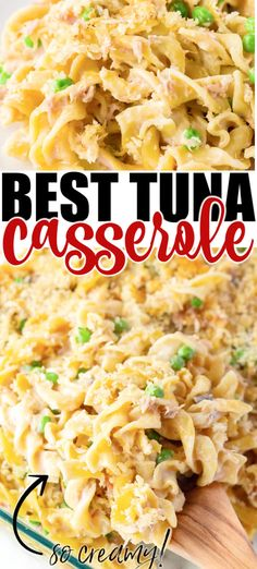 Fish Recipes, Seafood Recipes, Dinner Recipes, Cooking Recipes, Healthy Recipes, Dinner Ideas, Recipes For Tuna, Canned Tuna Recipes, Dinner Options