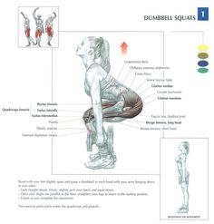 Dumbbell Squats ~ Repinned by Crossed Irons Fitness