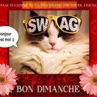 Bonjour c'est moi :) Bon... Parfait, Images, Eyes, Sunday Coffee, Sunday Humor, Hapy Day, Handsome Quotes, Bonheur, Cat Eyes