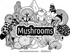 Decorative vector background of various exotic mushrooms