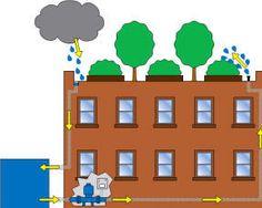 reusing rainwater