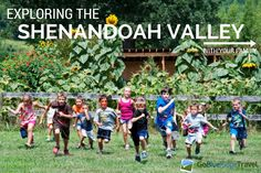 Exploring the Shenandoah Valley with Kids --> great travel ideas for family!
