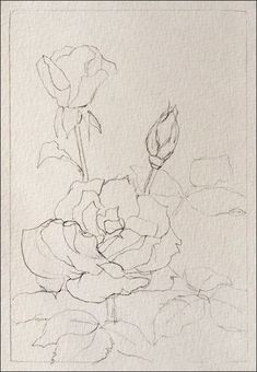 How To Paint Realistic Watercolor Roses. Good blog for painting other items and how to sell online. #HowtoSellOnline
