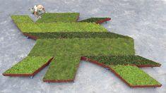 Fractal Garden by Legge Lewis Legge
