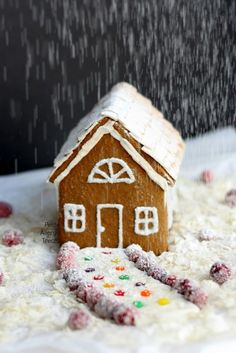 Gluten Free Vegan Gingerbread House- An allergy friendly gluten free gingerbread with Egg free Royal Icing #BRMHolidays, #clevergirls