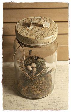 Bird's Nest in Glass Jar Cloche by mothsandrustshop on Etsy
