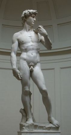The Renaissance. Above the sculpture of David by Michelangelo, one of the great artists of the Renaissance. Renaissance Kunst, Italian Renaissance, Florence Renaissance, Art Ninja, Giorgio Vasari, Wassily Kandinsky, Art And Architecture, Oeuvre D'art, Human Body