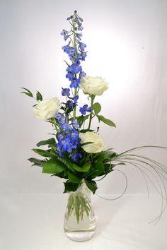 Kuvahaun tulos haulle sinivalkoiset kukat