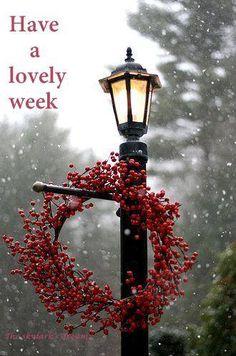 ★ Fiery Red ★ Good morning... Have a great week  The skylark's dream — https://www.facebook.com/permalink.php?story_fbid=416395361847346&id=264960083657542