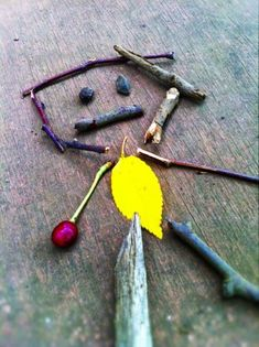Ephemeral art made from natural materials...make one today!