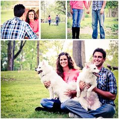 Mackenzie Lee Photography Family With Dogs Photo Shoot Mini Session