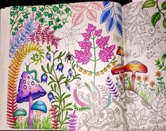 #enchantedforest #johannabasford #coloring