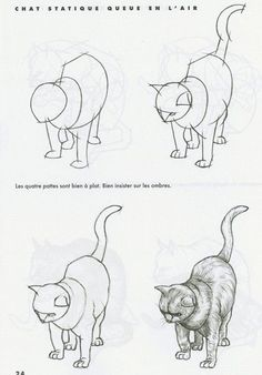 Dessiner les Chats - Méthode facile