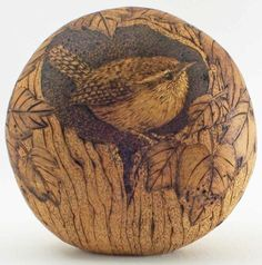 Love this...pyrography on a gourd...well done