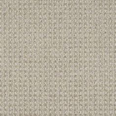"""Carpeting in style """"Sheer Delight"""" color Modern Gray - by Shaw Floors"""