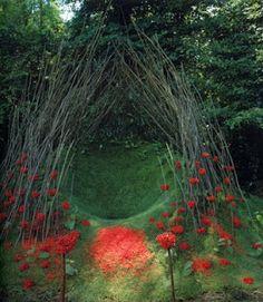 Nid rouge 1999 - terre, plantation de gazon et branches  d'érables, sorbes.