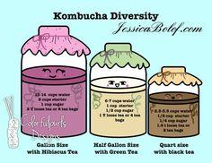 Kombucha Cheat Sheet Art: Diversity with Pink Hibiscus, Green and Black teas Kombucha Benefits, Kombucha Scoby, Tea Benefits, Kombucha Flavors, Kombucha Recipe, Fermentation Recipes, Homebrew Recipes, Kombucha How To Make, Fermented Foods