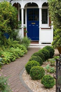KATHY TAYLORS GARDEN, LONDON: FRONT GARDEN WITH BRICK PATH TO FRONT DOOR. GRAVEL BED WITH BOX BALLS