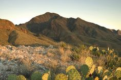 Franklin Mountains State Park = El Paso, Texas = Two hiking trails, rock climbing, primitive tent camping, 5 self-contained RV sites, ranger programs