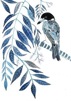 Indigo Butcher Bird and Australian White Cedar, Original painting. Bird painting, Australian plants, botanical, Bird art, Australian artist by Floriosa on Etsy