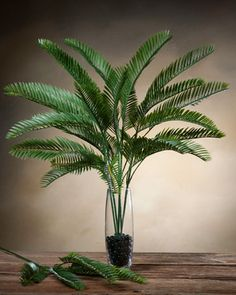 Cycas Fronds Silk Foliage Stems at Petals Office Scapes Direct Tropical Wedding Centerpieces, Plant Centerpieces, Tropical Wedding Decor, Centerpiece Decorations, Artificial Floral Arrangements, Flower Arrangements Simple, Orchid Arrangements, Silk Plants, Faux Plants