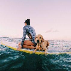 beach, summer, sun, surf, travel
