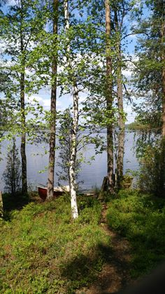 Saimaa lake Geography, Wonders Of The World, Iceland, Denmark, Norway, Sweden, Flora, Statue, History