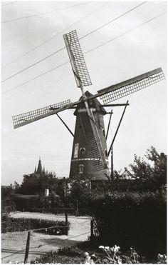 Zeelst,  Zeelster Molen, Kapelstraat 142. 1950 - 1960