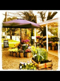Flowers at the road stall September 2012 #theroadstall