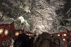 """""""貴船神社雪見拝観 この輝くような雪景色は本当に美しいです"""""""