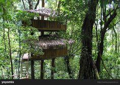 Kosta Rika ağaç evleri  Finca Bellavista, özel olarak korunan 600 dönümlük bir orman. Kendilerini doğal yaşamı korumaya adamış insanlar tarafından özenle korunan bu bölge ağaç evleri ile de ziyaretçilerin ilgisini çekiyor.  İçeriğin tamamı ve daha fazlası için http://goo.gl/NIMERN  #yoyomix #travel #costarika #jungle